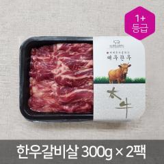 갈비살/늑간살(팩) - 국산(300g*2pack) | (주)태우그린푸드 - 1+등급