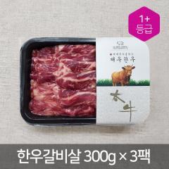 갈비살/늑간살(팩) - 국산(300g*3pack) | (주)태우그린푸드 - 1+등급